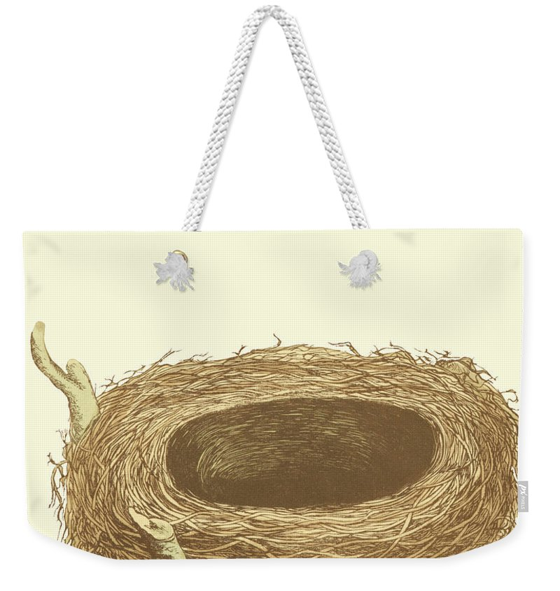 Bird Weekender Tote Bag featuring the painting Antique Nest & Egg IIi by Morris