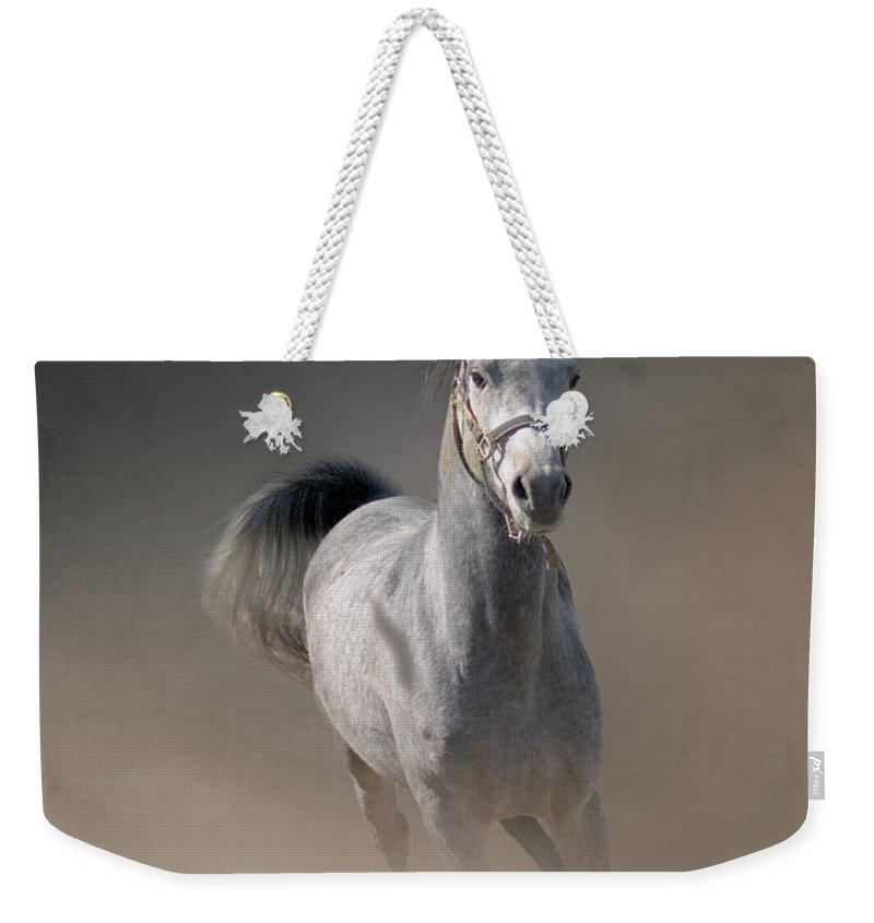 Horse Weekender Tote Bag featuring the photograph Arabian Horse Running Through Dust by Christiana Stawski