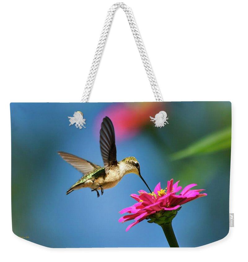 Hummingbird Weekender Tote Bag featuring the photograph Art Of Hummingbird Flight by Christina Rollo