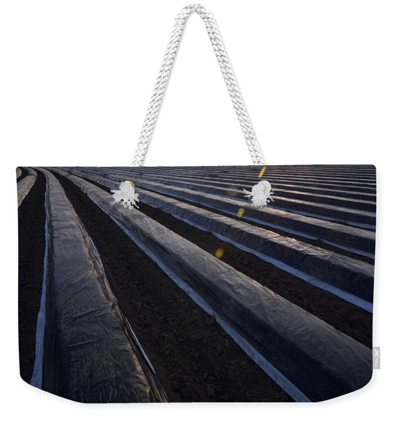Tranquility Weekender Tote Bag featuring the photograph Asparagus Field by Andy Brandl