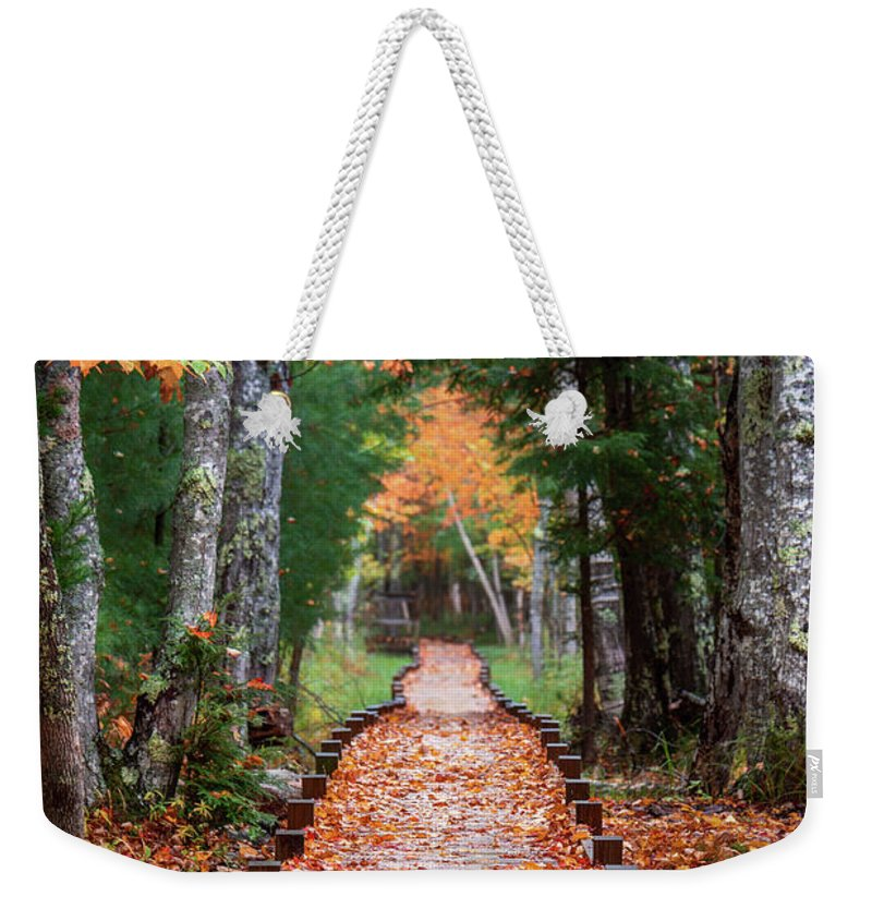 Acadia National Park Weekender Tote Bag featuring the photograph Autumn At Jesup Path by Jesse MacDonald