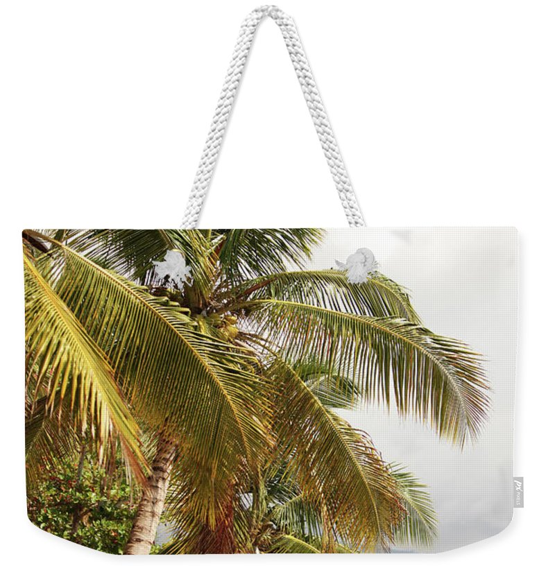 Tropical Tree Weekender Tote Bag featuring the photograph Beach In Haiti by 1001nights