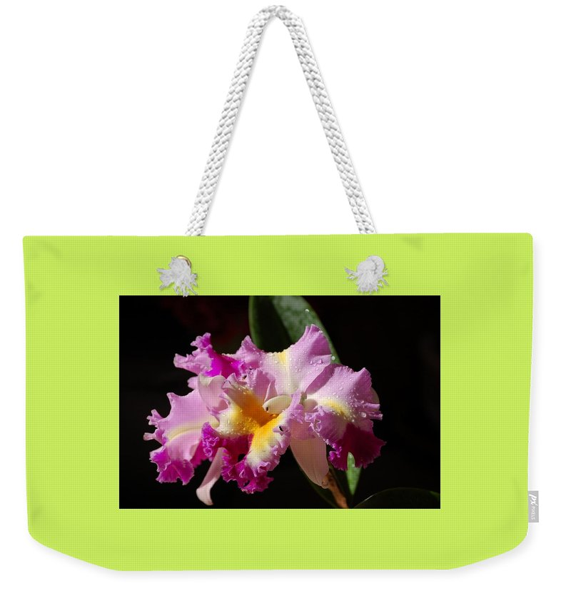 Orchid Weekender Tote Bag featuring the photograph Best Cattleya by Nancy Ayanna Wyatt