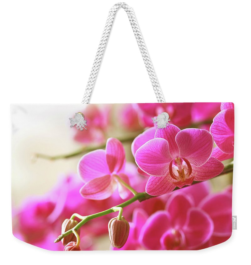 Environmental Conservation Weekender Tote Bag featuring the photograph Blooming Pink Orchid On A Green Branch by Dreaming2004