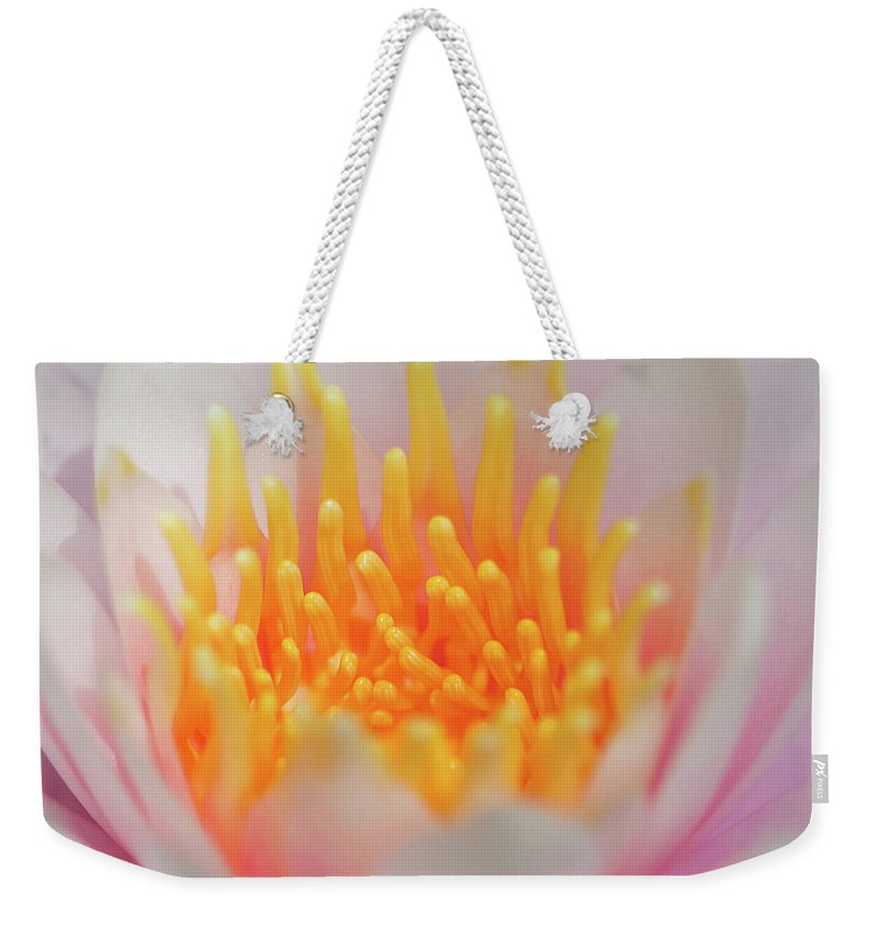 White Water Lily Weekender Tote Bag featuring the photograph Blooming Virgins by Az Jackson
