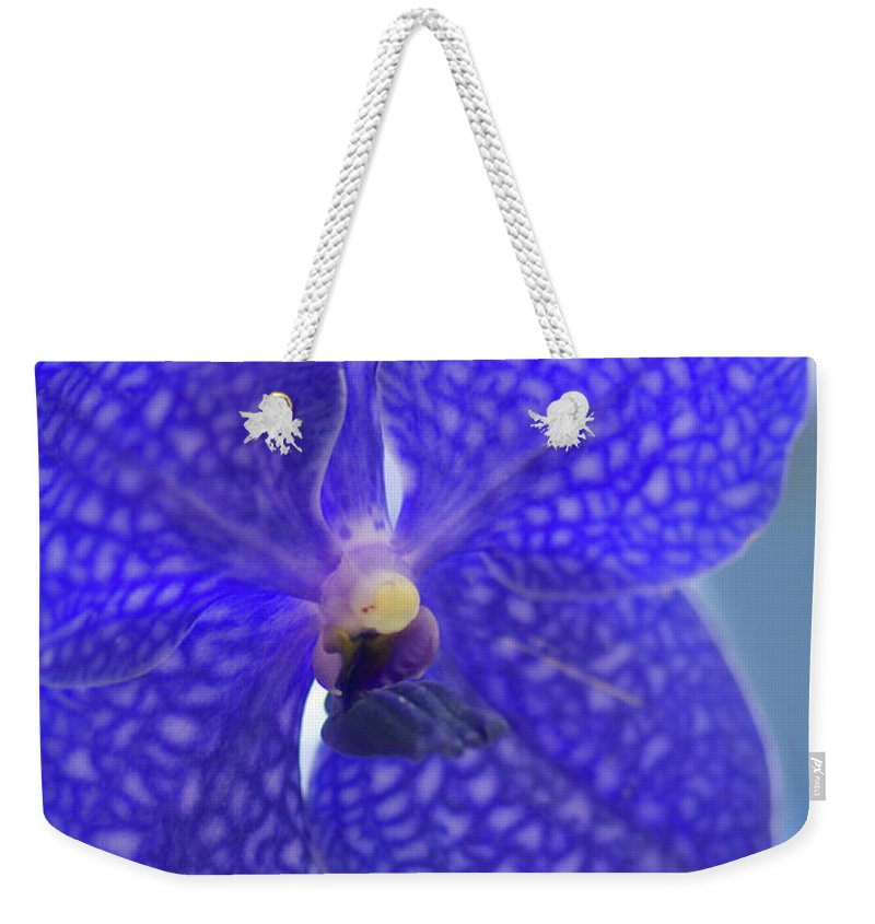 Rockville Weekender Tote Bag featuring the photograph Blue Vanda Orchid Flower Close-up by Maria Mosolova