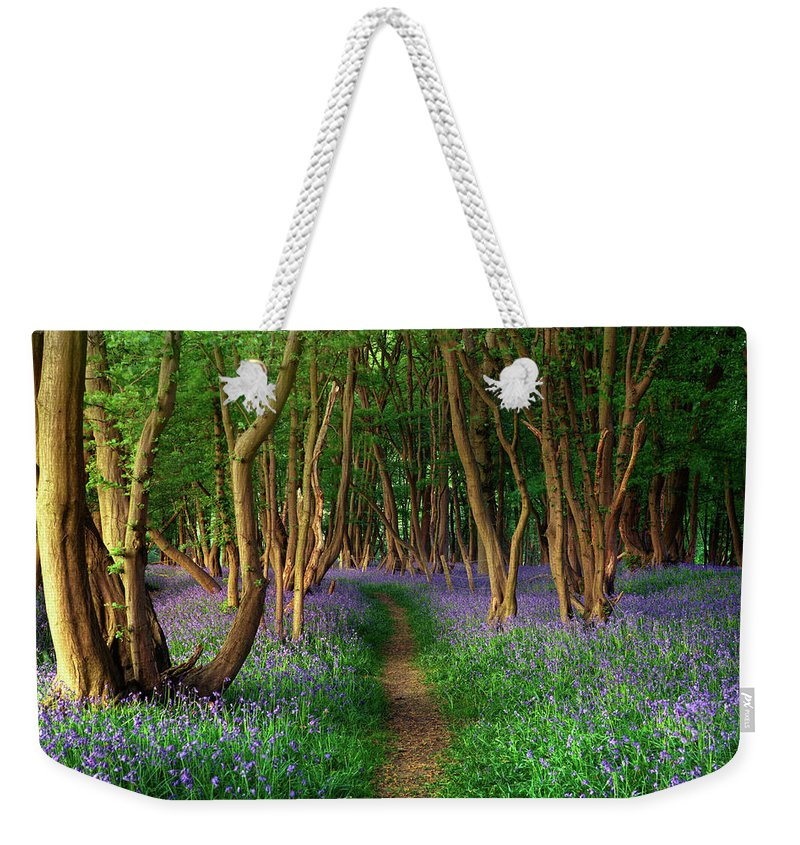 Tranquility Weekender Tote Bag featuring the photograph Bluebells In Sussex by Photography By Sam C Moore