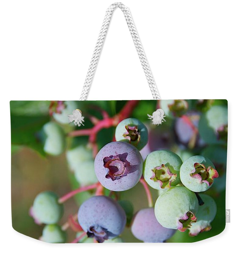 Large Group Of Objects Weekender Tote Bag featuring the photograph Blueberries by ©howd, Howard Lau