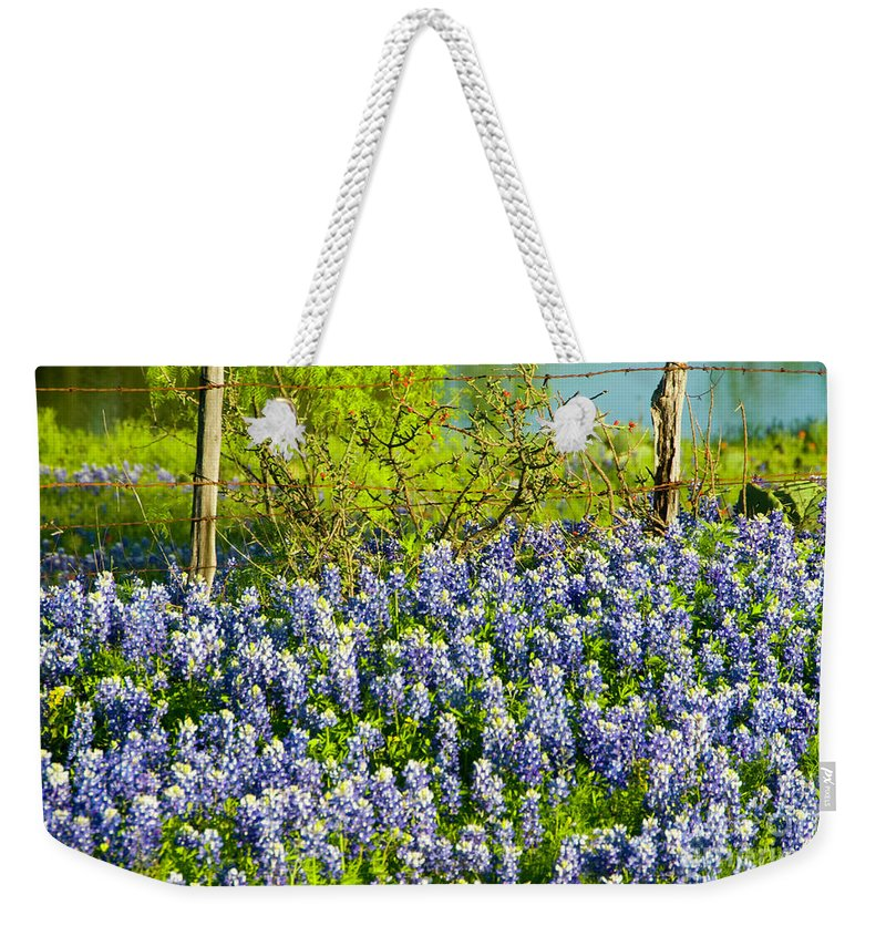 Season Weekender Tote Bag featuring the photograph Bluebonnets, Texas by Donovan Reese