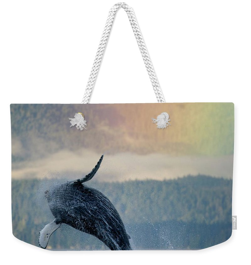 Animal Themes Weekender Tote Bag featuring the photograph Breaching Humpback Whale And Rainbow by Paul Souders