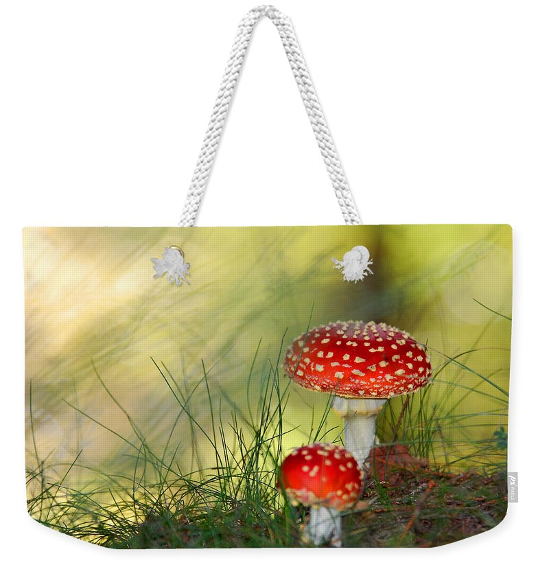 Grass Weekender Tote Bag featuring the photograph Brother And Sister Mushrooms by Philippe Sainte-laudy Photography