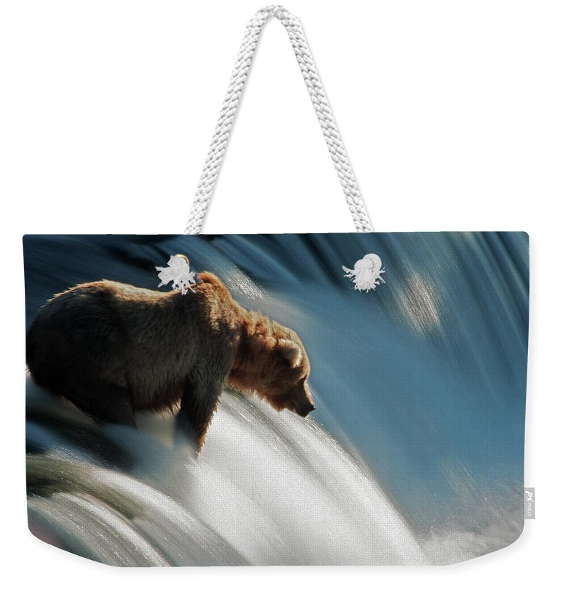 Poetry- Literature Weekender Tote Bag featuring the photograph Brown Bear At Brooks Falls by Mark Newman