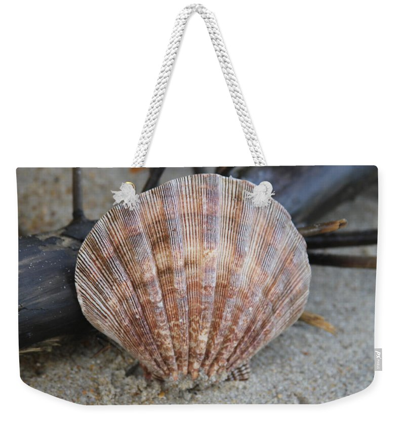 Shell Weekender Tote Bag featuring the photograph Brown Cockle Shell And Driftwood 2 by Cathy Lindsey