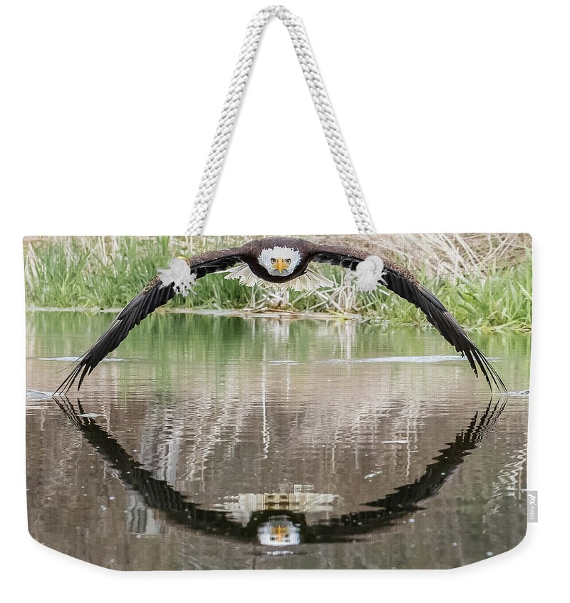 Eagle Weekender Tote Bag featuring the photograph Bruce the Bald Eagle by Steve Biro