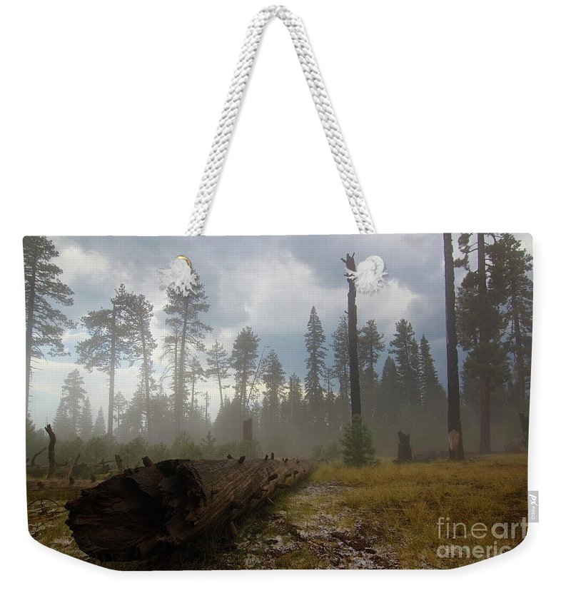 Burnt Weekender Tote Bag featuring the photograph Burned Trees At Lassen Volcanic by Victor De Souza