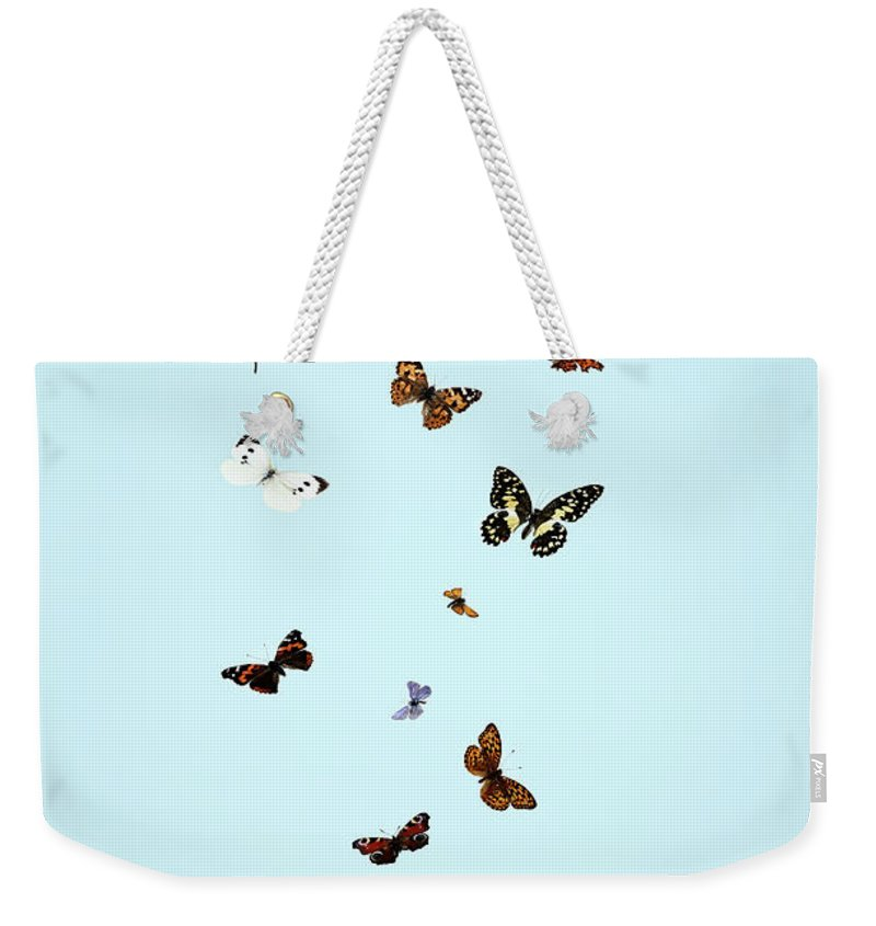 Animal Themes Weekender Tote Bag featuring the photograph Butterflies Escaping From Jar by Martin Poole