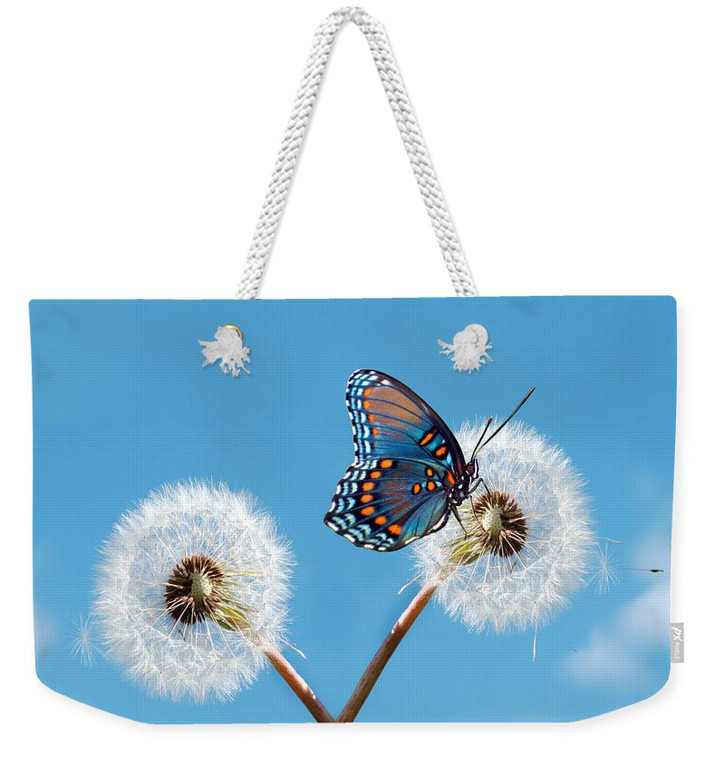 Animal Themes Weekender Tote Bag featuring the photograph Butterfly On Dandelion by Maria Wachala