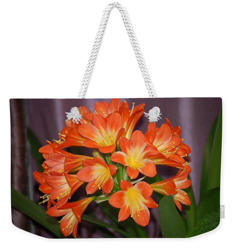 Weekender Tote Bag Clivia Blossoms by Nancy Ayanna Wyatt