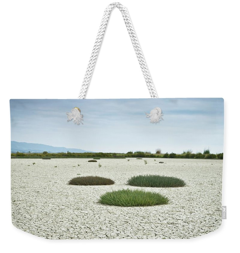 Grass Weekender Tote Bag featuring the photograph Clumps Of Grass Growing Through Cracked by David Duchemin / Design Pics