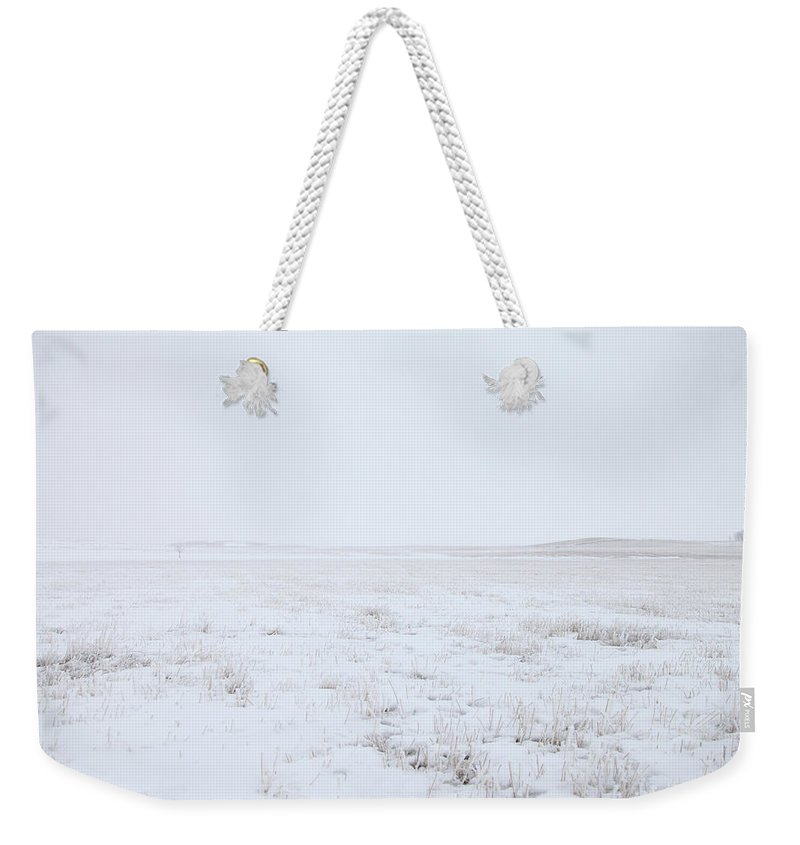 Tranquility Weekender Tote Bag featuring the photograph Cold Winter Scene Of An Open Wheat Field by Lori Andrews