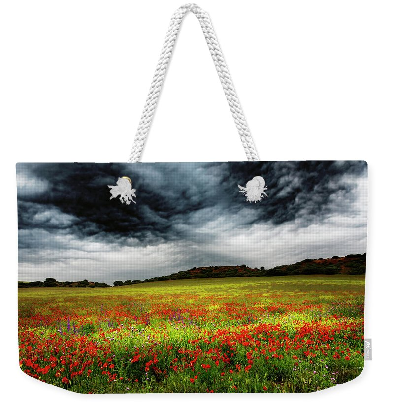 Nature Weekender Tote Bag featuring the photograph Colorful Fields 1 by Vicente Sargues