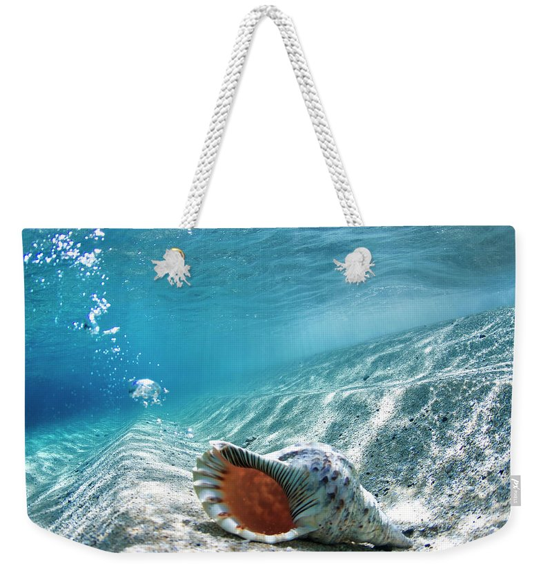 Sea Weekender Tote Bag featuring the photograph Conch Shell Bubbles by Sean Davey
