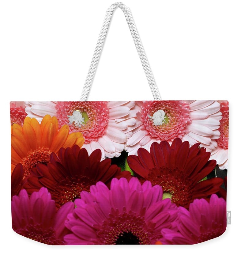 Large Group Of Objects Weekender Tote Bag featuring the photograph Daisies by Lumina Imaging
