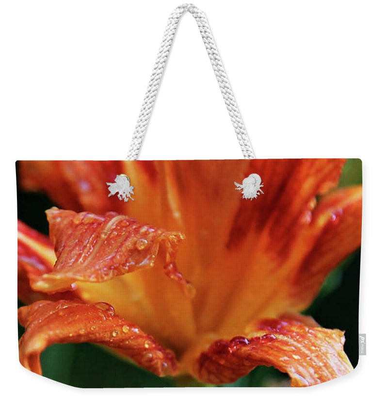 Flower Weekender Tote Bag featuring the photograph Daylily Dewdrops by Toni Hopper