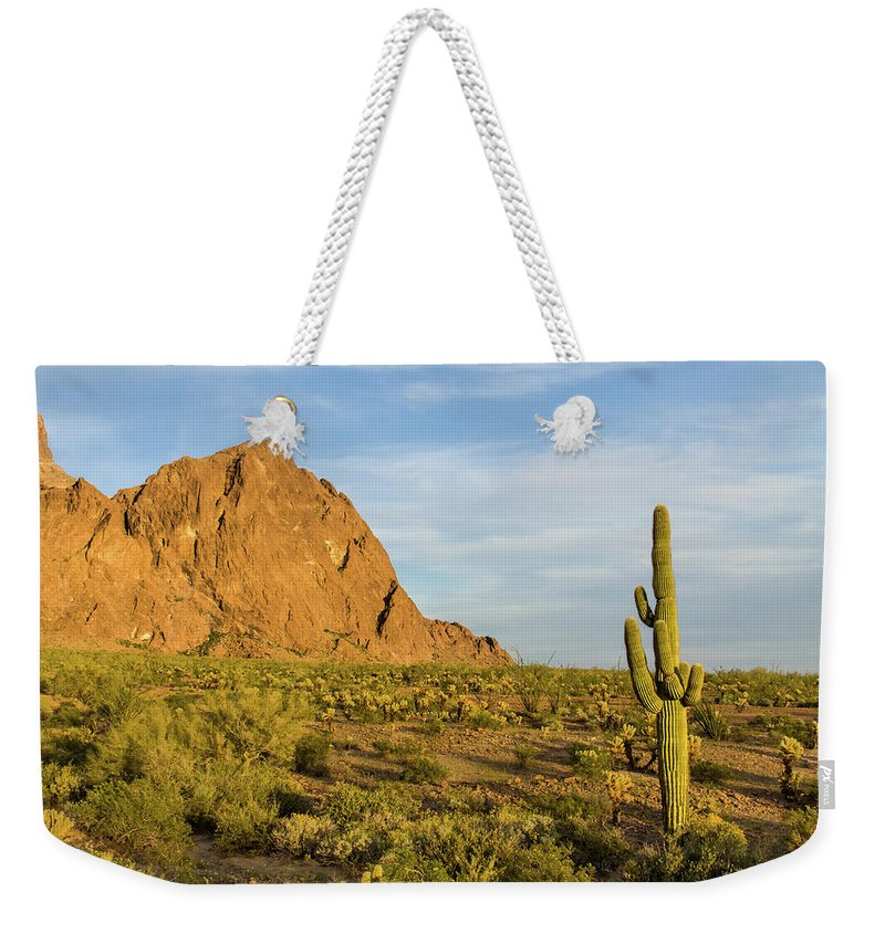 Geology Weekender Tote Bag featuring the photograph Desert Mountain Cactus Classic by Photo By Chris Lemmen Www.chrislemmenphotography.ca