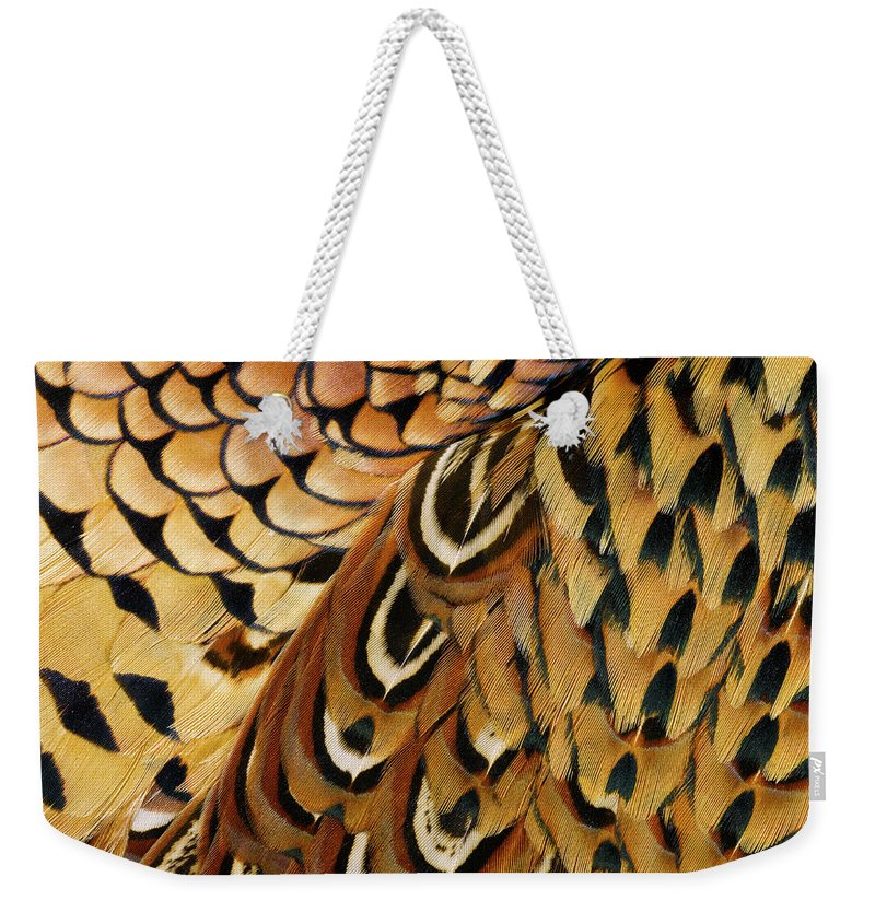 Orange Color Weekender Tote Bag featuring the photograph Detail Of Pheasant Feathers by Jeffrey Coolidge