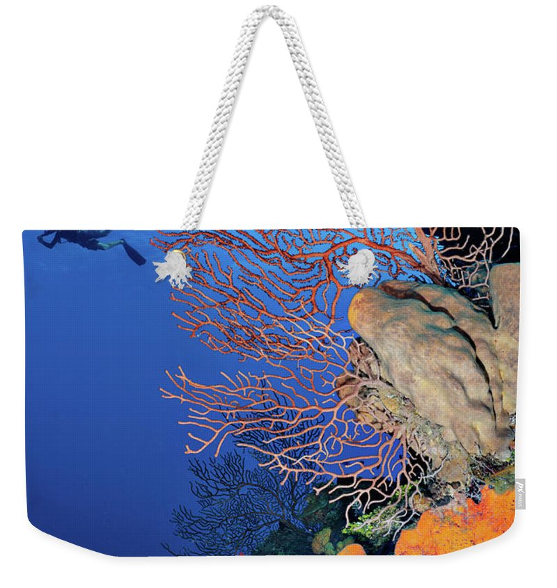 Underwater Weekender Tote Bag featuring the photograph Discovering The Sea by Extreme-photographer