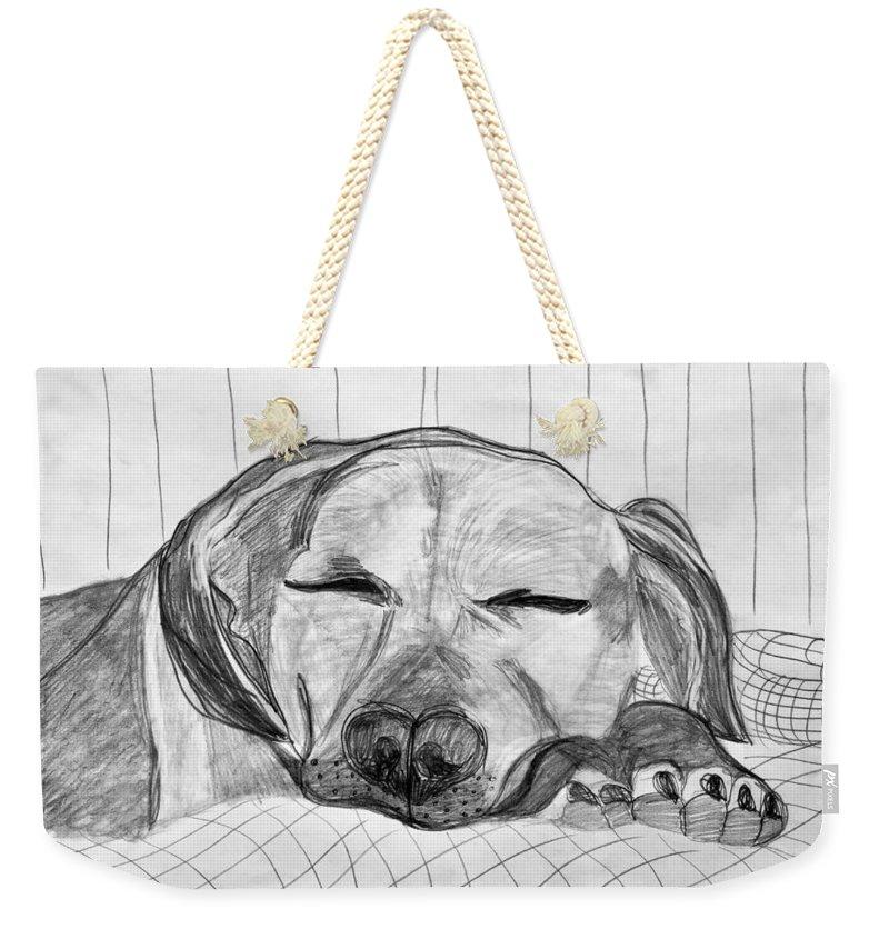 Dog Weekender Tote Bag featuring the drawing Django Napping by Kerin Bowen