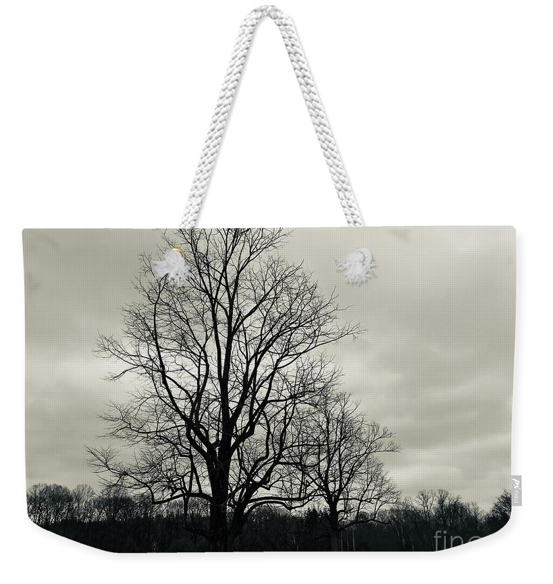 Double Life Weekender Tote Bag featuring the photograph Double Life by Michael Krek
