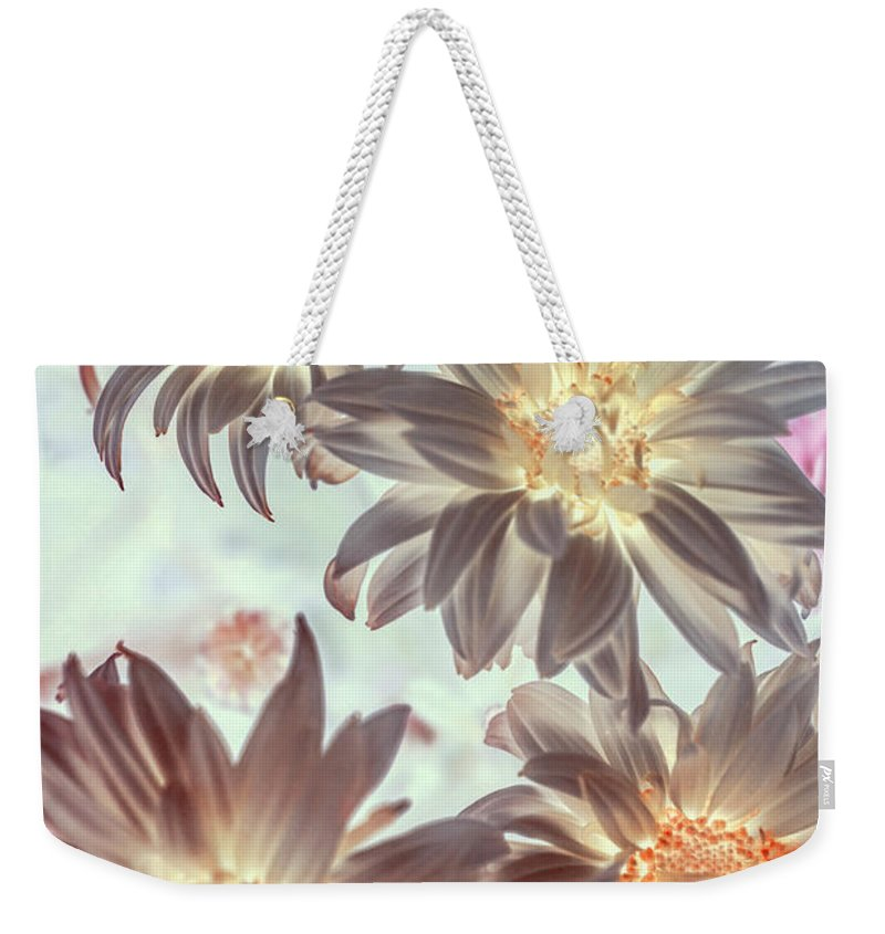 Flowers Weekender Tote Bag featuring the photograph Electric Beauty by Jorgo Photography - Wall Art Gallery