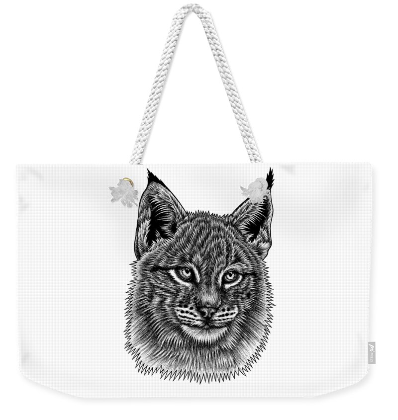 Lynx Weekender Tote Bag featuring the drawing Eurasian Lynx kitten by Loren Dowding