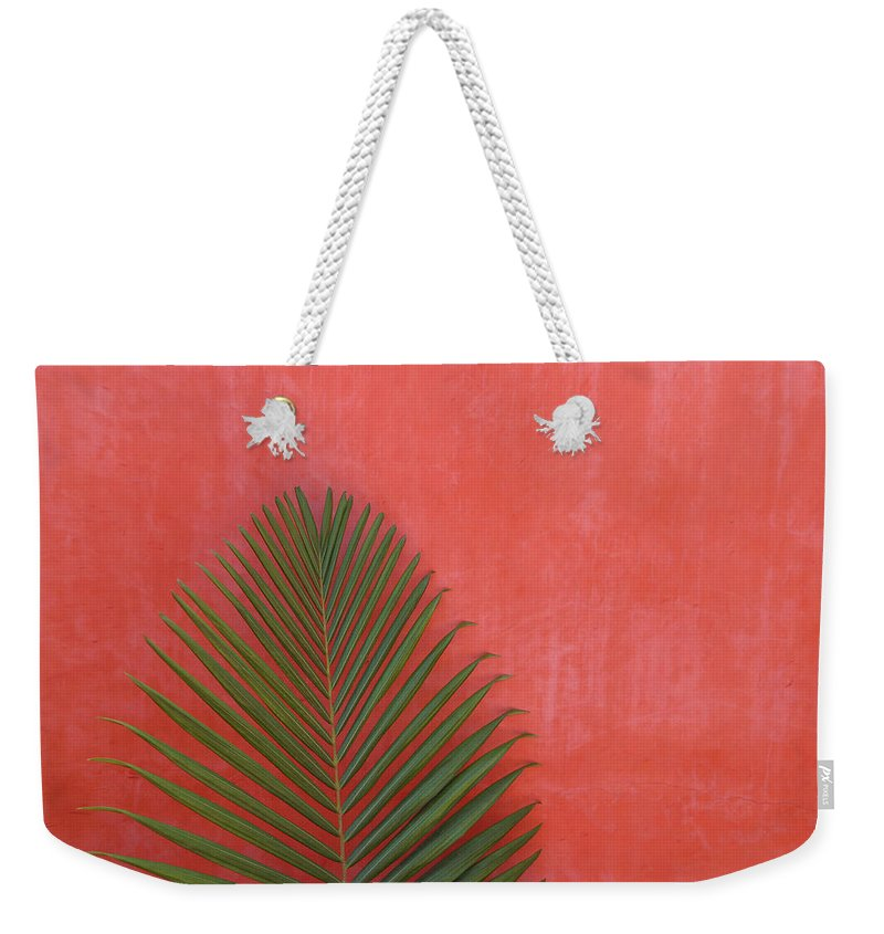 Recreational Pursuit Weekender Tote Bag featuring the photograph Exotic Background by Lucgillet