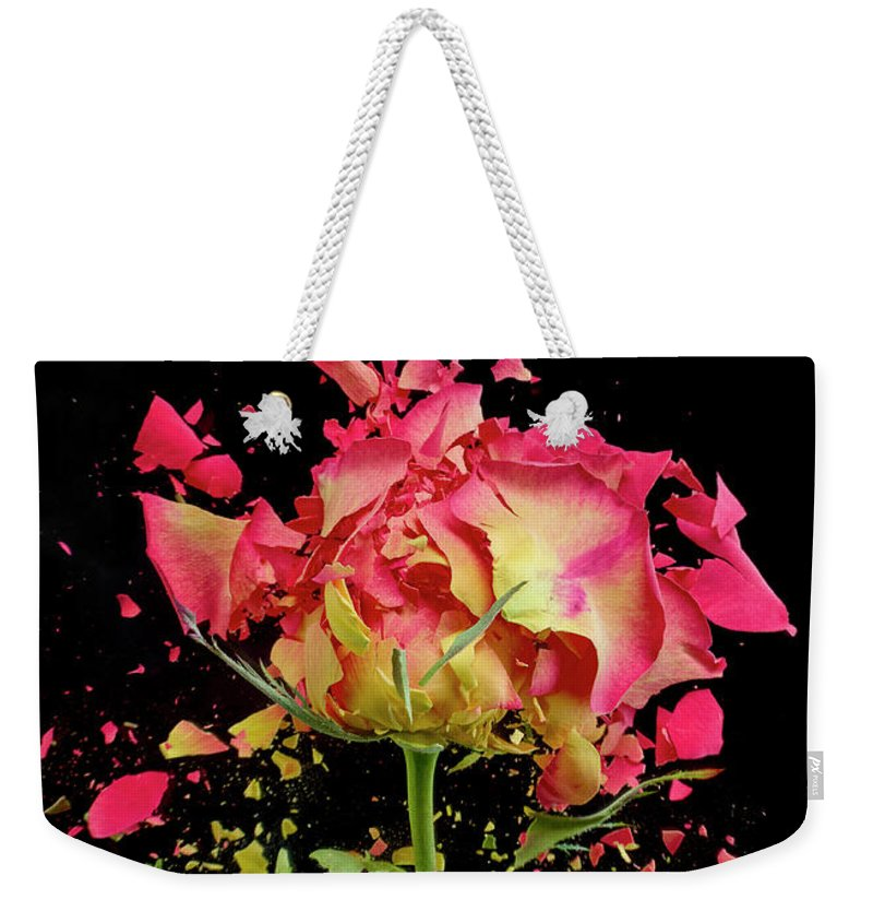 Black Background Weekender Tote Bag featuring the photograph Exploding Rose by Don Farrall