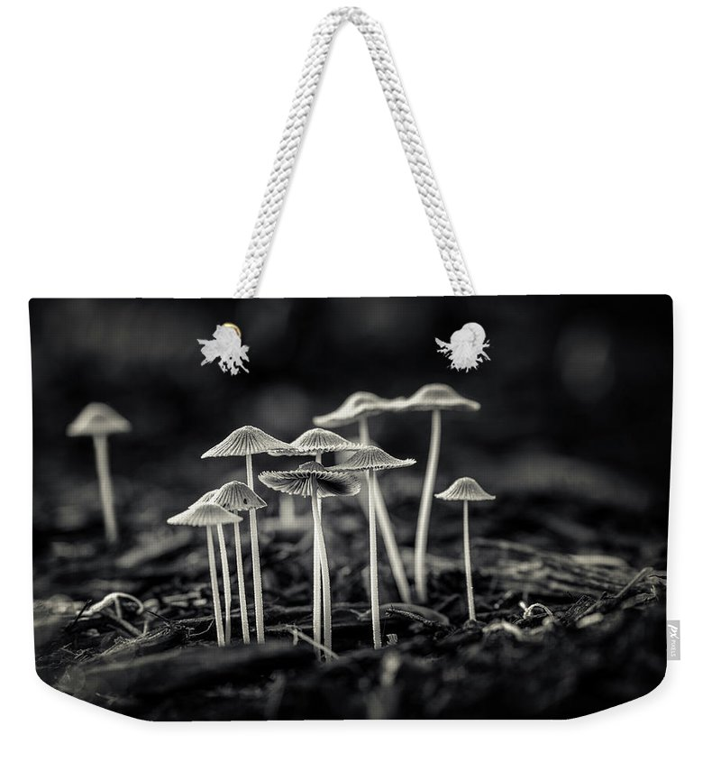Art Weekender Tote Bag featuring the photograph Fanciful Fungus-2 by Tom Mc Nemar