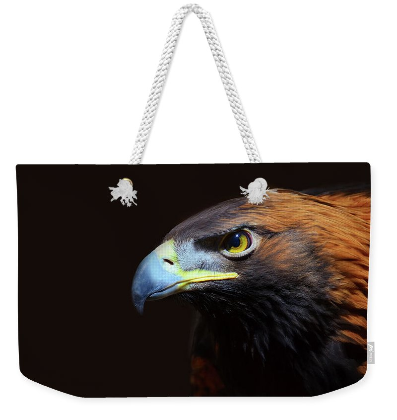 Animal Themes Weekender Tote Bag featuring the photograph Female Golden Eagle by A L Christensen