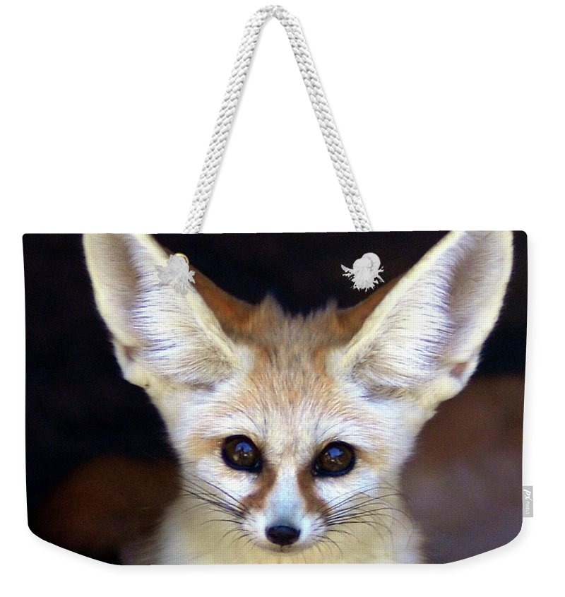 Alertness Weekender Tote Bag featuring the photograph Fennec Fox by Floridapfe From S.korea Kim In Cherl