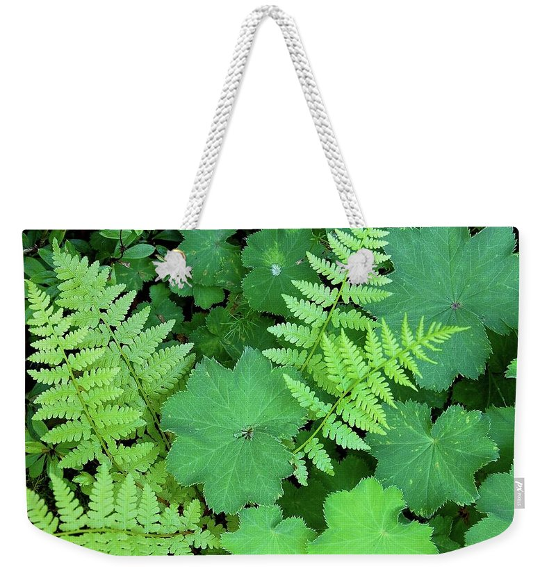 Outdoors Weekender Tote Bag featuring the photograph Ferns And Ladys Mantle by Pamela Long