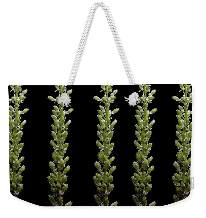Bud Weekender Tote Bag featuring the photograph Flower Buds On Black Background by Michael Duva