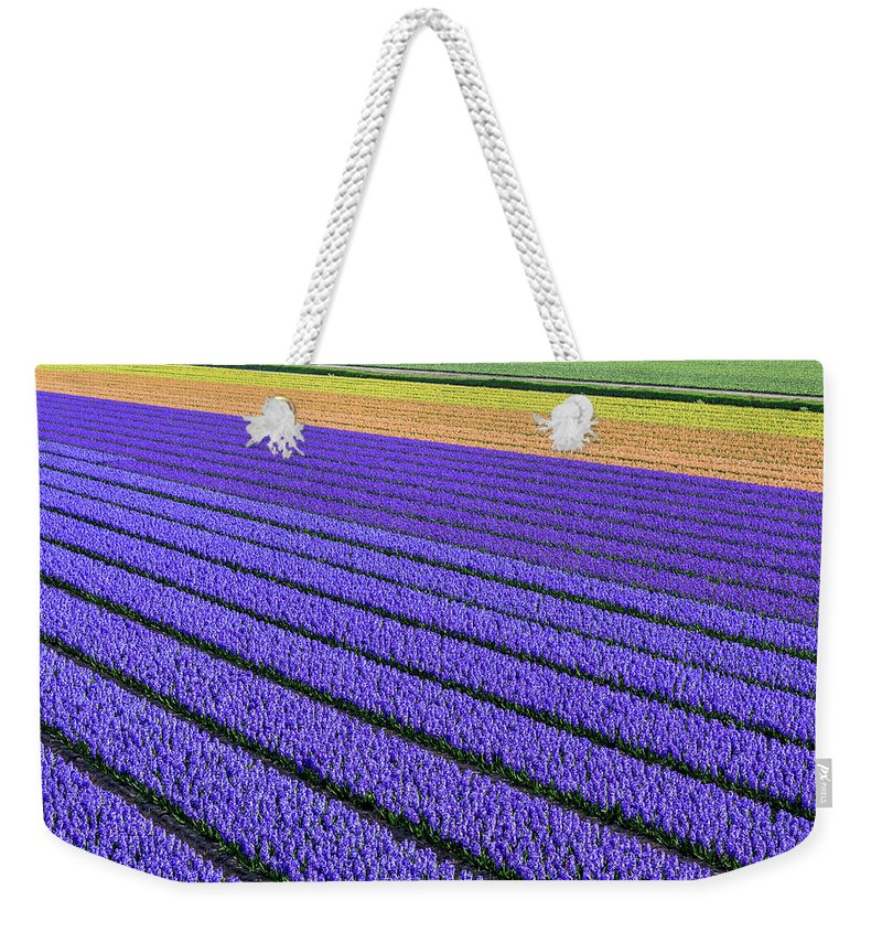 Tranquility Weekender Tote Bag featuring the photograph Flower Fields In Spring In Holland by Frans Sellies