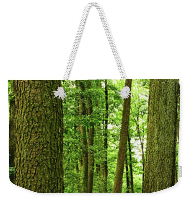 Scenics Weekender Tote Bag featuring the photograph Footpath Between The Trees by Tomchat