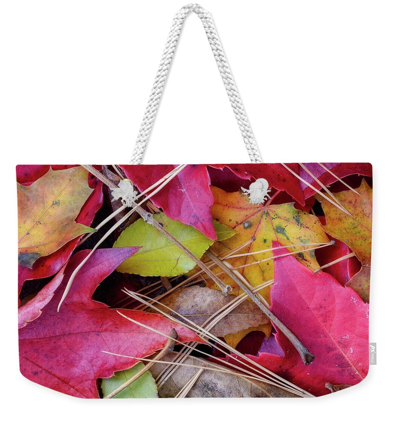 Photograph New England Weekender Tote Bag featuring the photograph Forest Floor 1 by Michael Hubley
