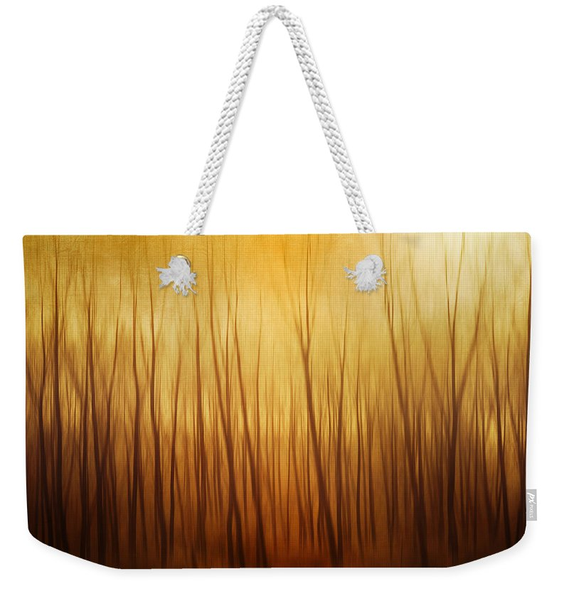 Dawn Weekender Tote Bag featuring the photograph Forest by Philippe Sainte-laudy Photography