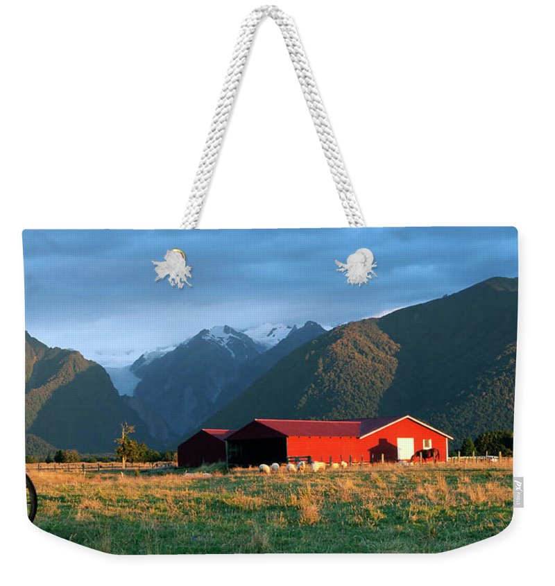 Horse Weekender Tote Bag featuring the photograph Fox Glacier Looms Over Plain by Dmathies