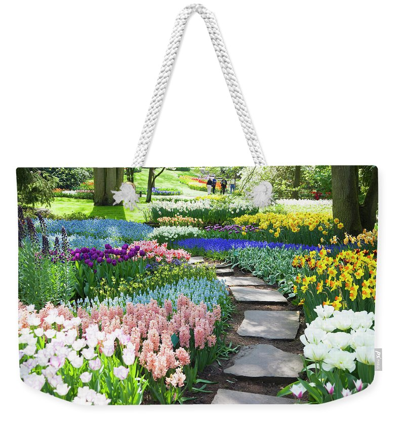 Flowerbed Weekender Tote Bag featuring the photograph Garden Flowers 53 Xxxl by Lya cattel