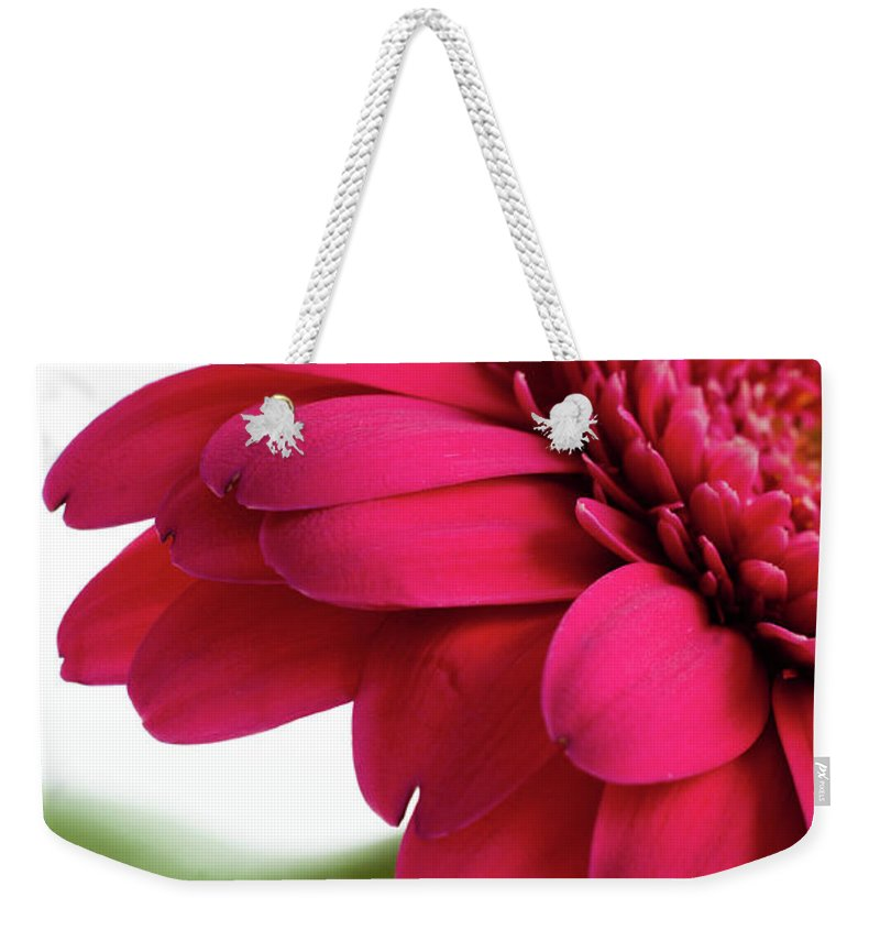 Flowerbed Weekender Tote Bag featuring the photograph Gerbera Daisy by Subman