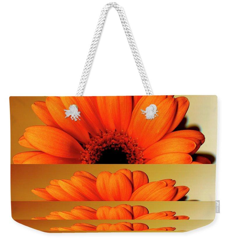 Orange Color Weekender Tote Bag featuring the digital art Gerbera Flower As Rising Sun by Eversofine